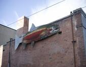 fishstreetart